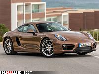 2013 Porsche Cayman (981C) = 264 kph, 275 bhp, 5.1 sec.